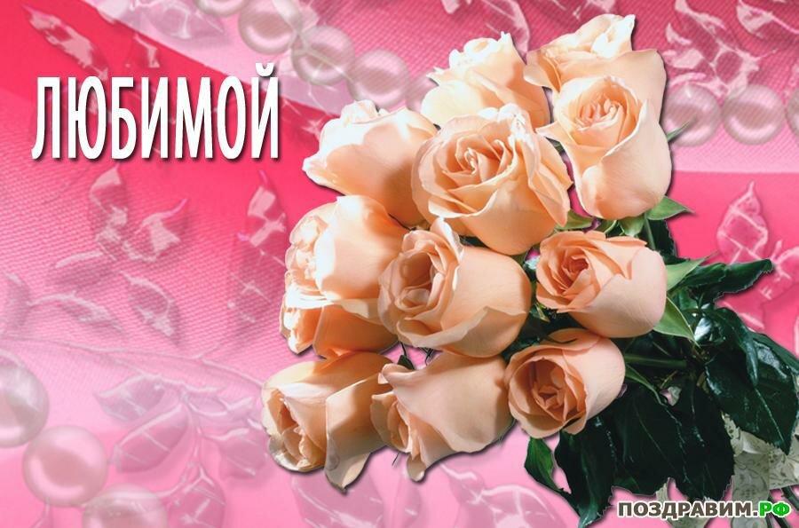 Роза для любимой открытка