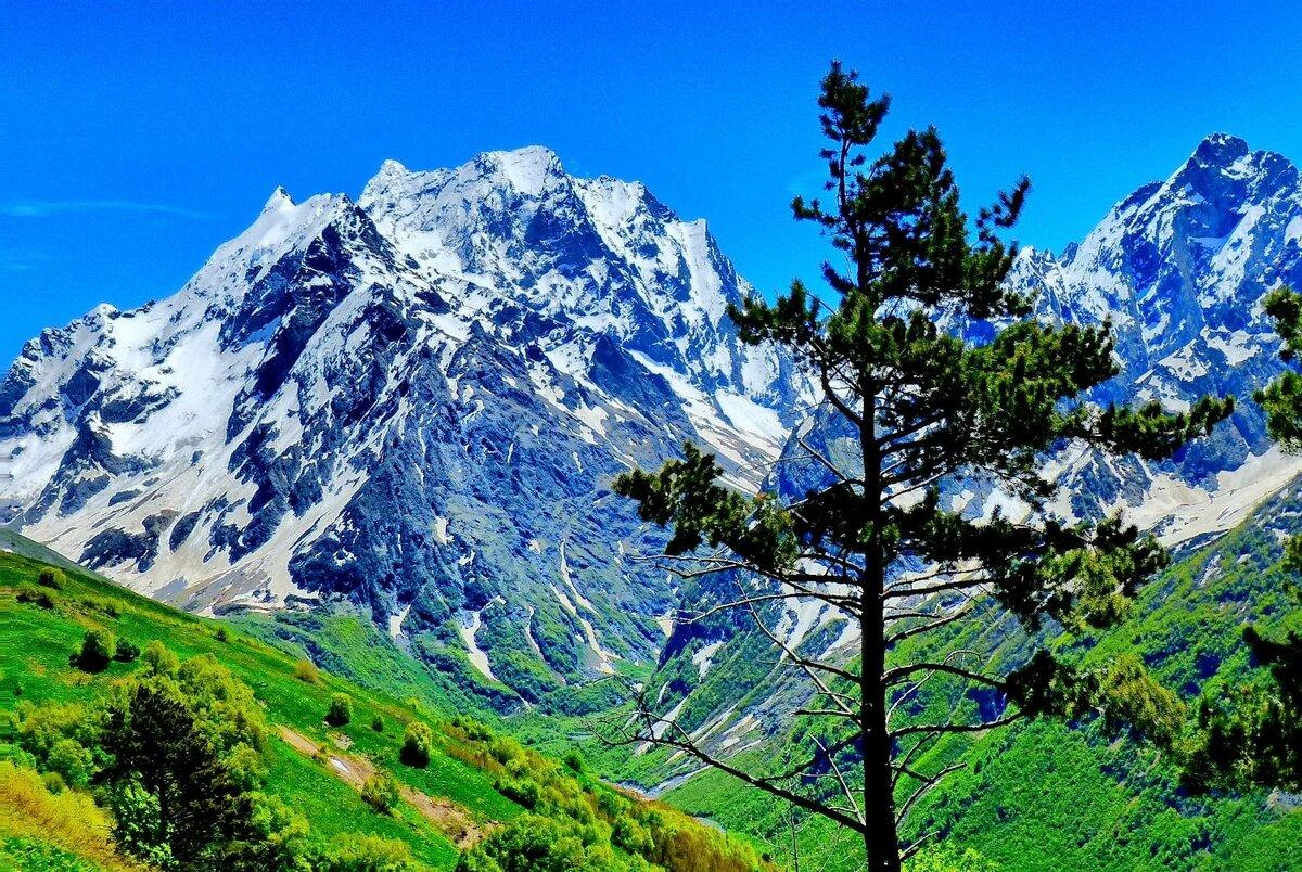 картинки горы красивые домбай выходу свежих