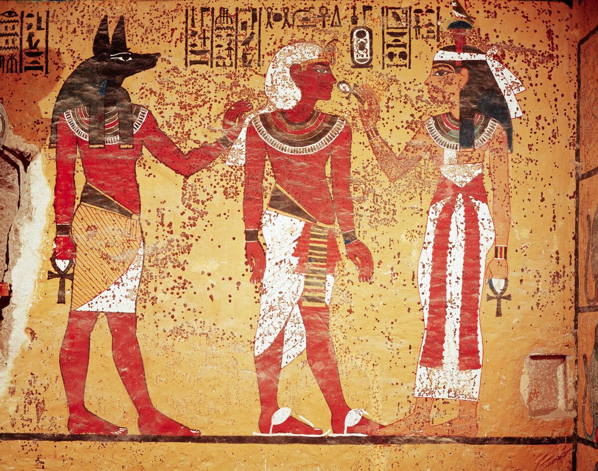 печени трески исторические картинки египта мара славян строга
