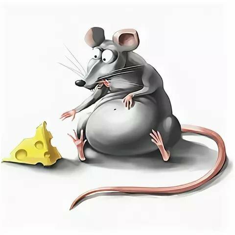 Вредный, мышки рисунки смешные до слез