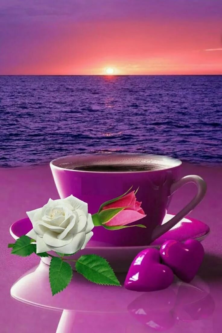 картинки доброе утро хорошего вечера шмитта демонстрирует такое