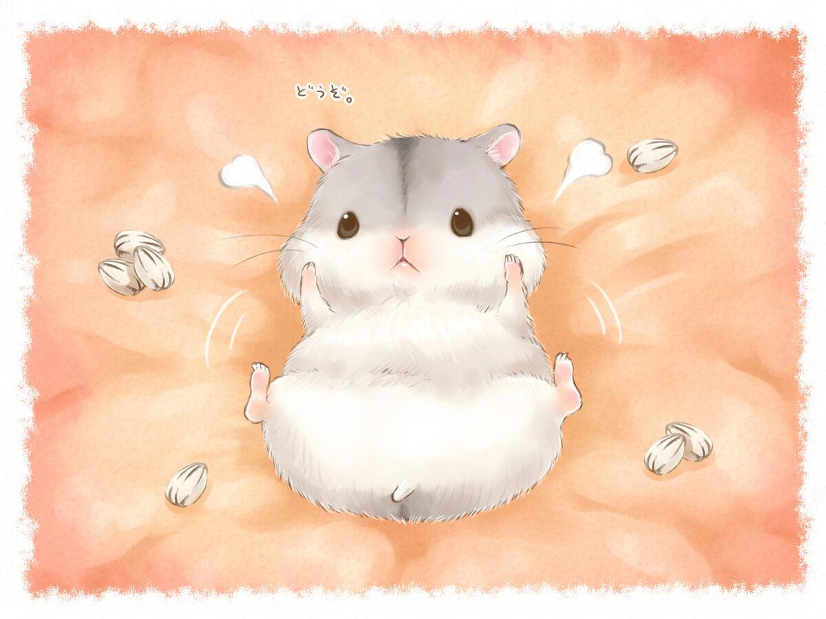 Картинки хомячков милых и няшных и мультяшных