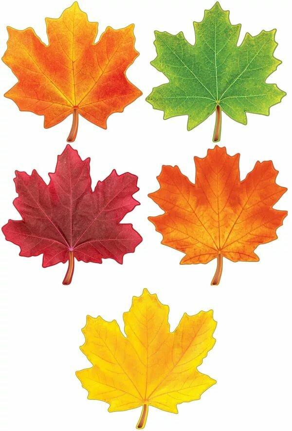 Картинки осенних листьев с детьми