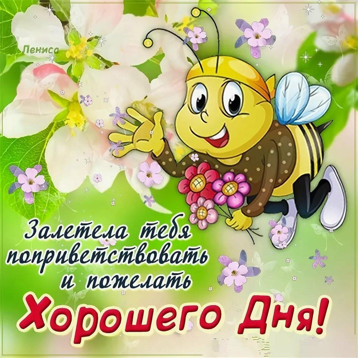 Пожелания хорошего дня поздравления