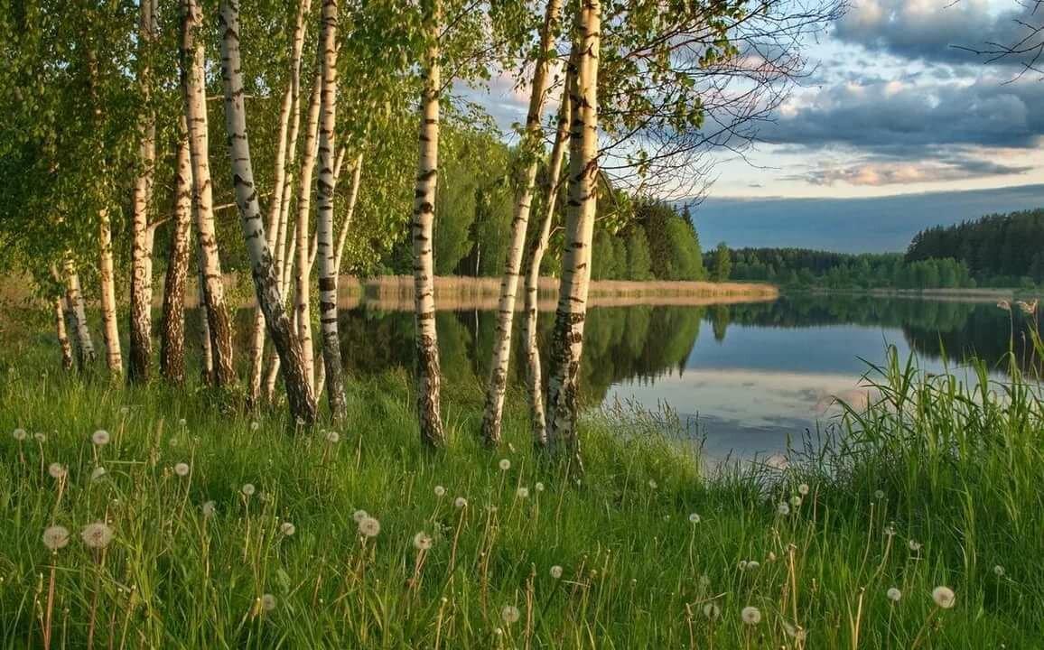 Картинки природы красивые русские