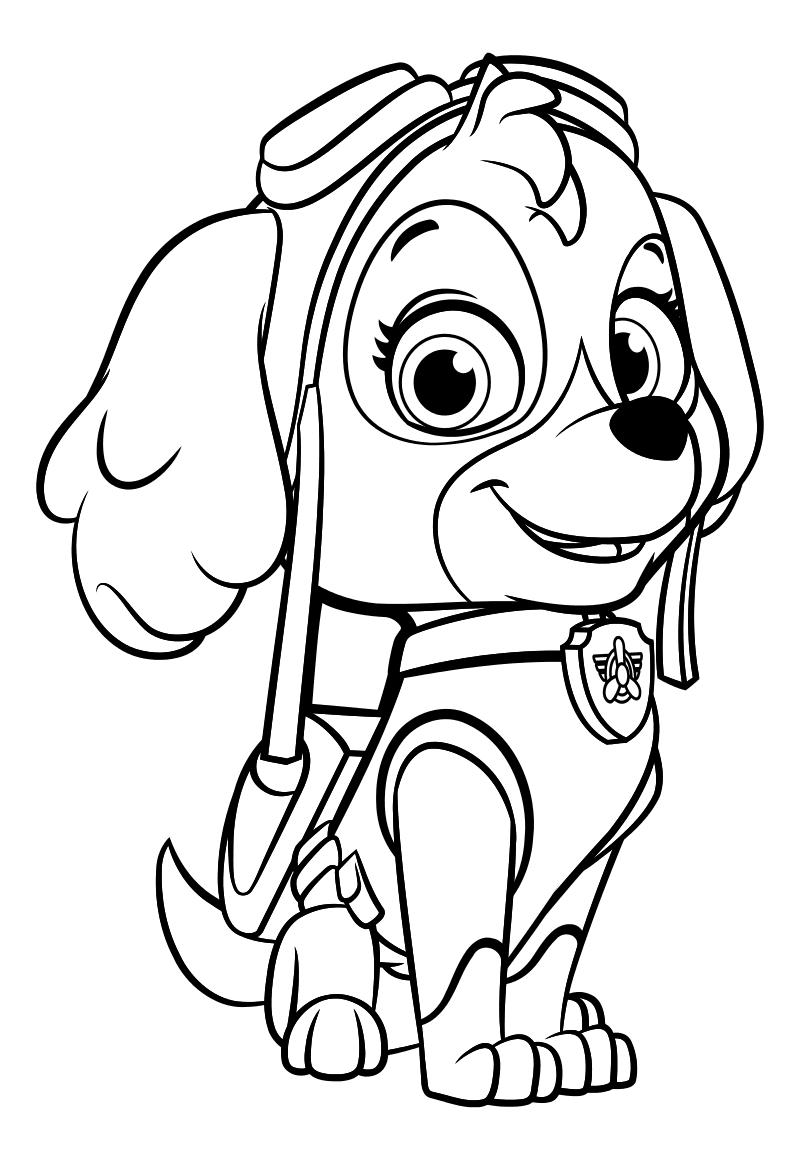 картинки не раскрашенные щенячий патруль санитарной службе считают