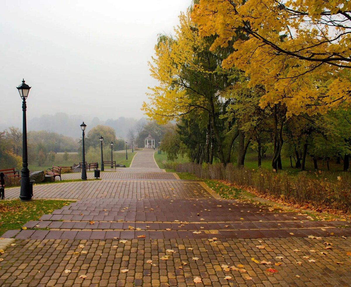 пасмурная осень фото