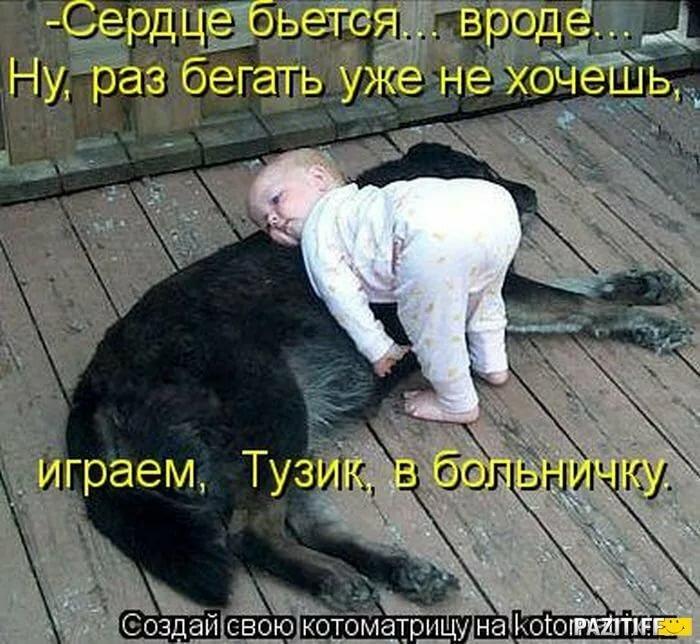 Днем рождения, картинки с животными и с детьми и с надписями смешные