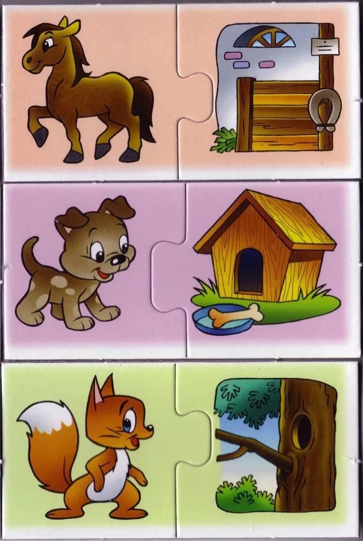 Детская игра кто где живет картинки