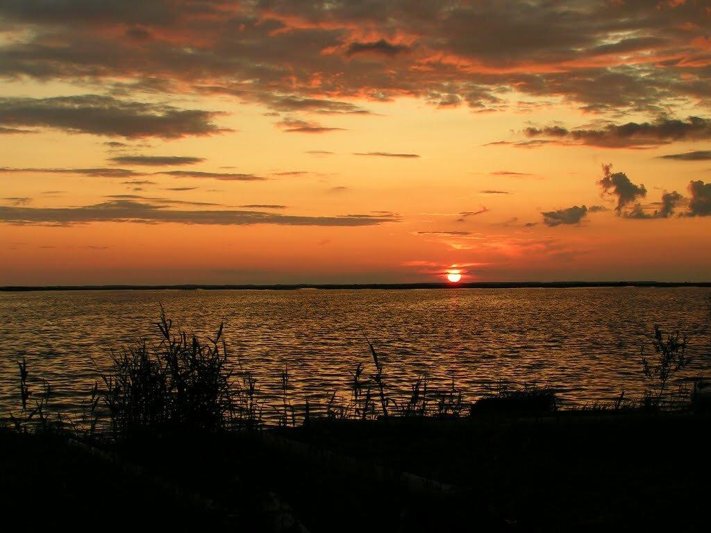 белое озеро вологодская область картинка