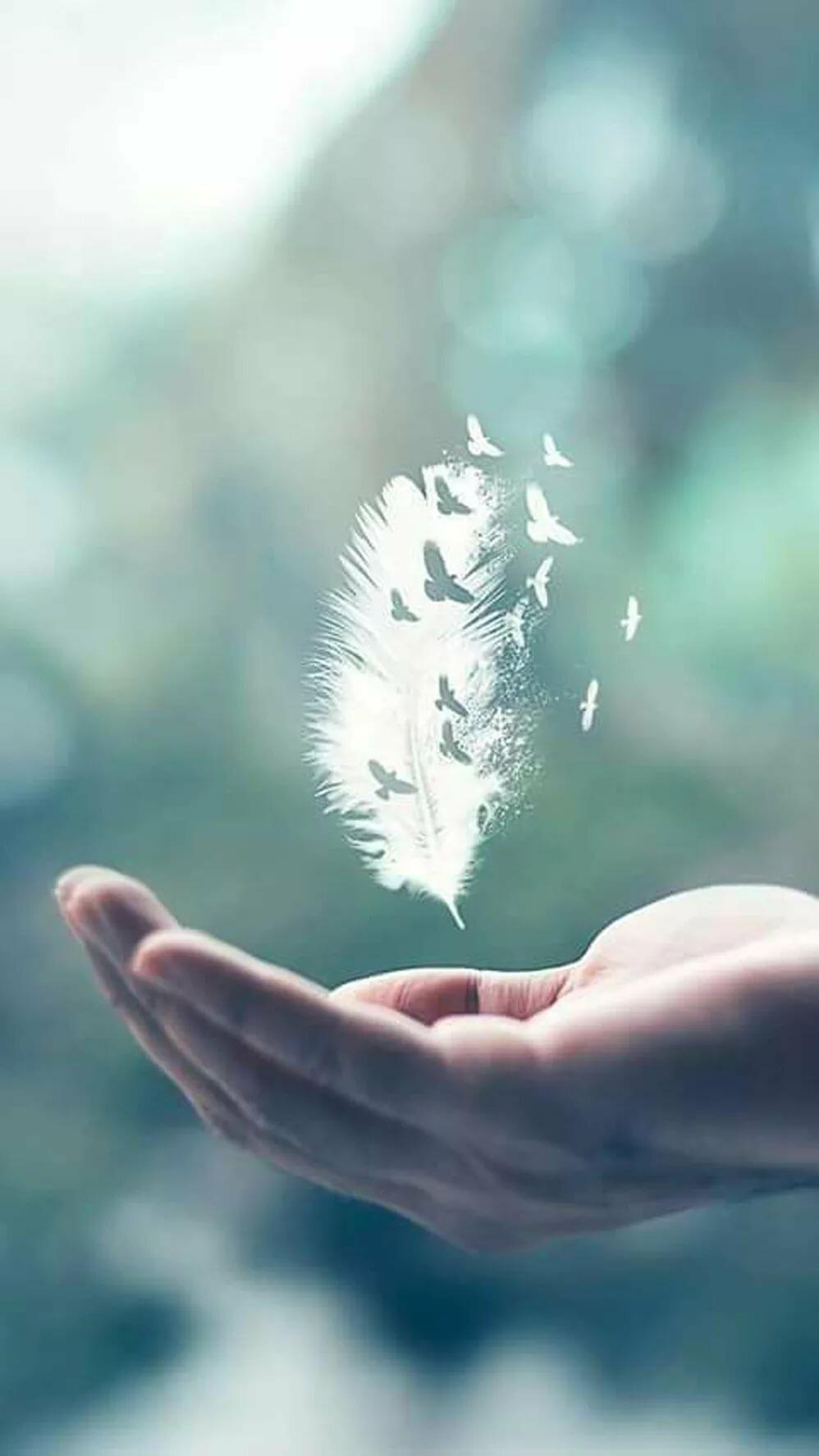Открытки доброты в душе хранишь немного