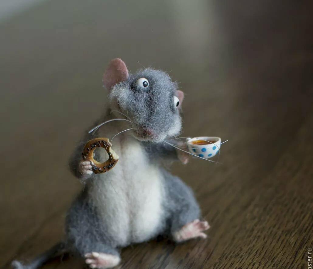 Прикольные картинки с мышами прикольные, для дяди день