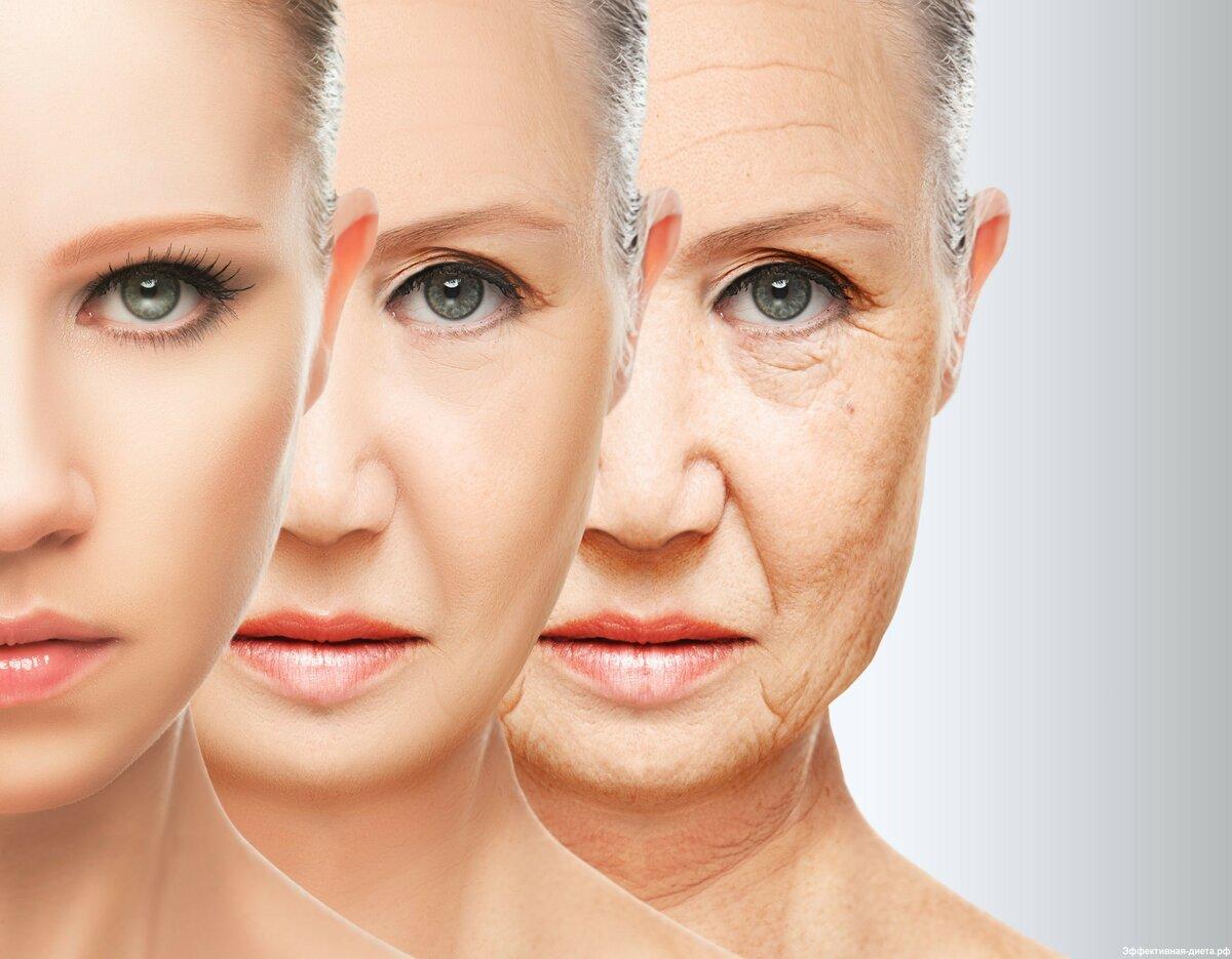 фото возрастных изменений лица по возрастам возникает желание