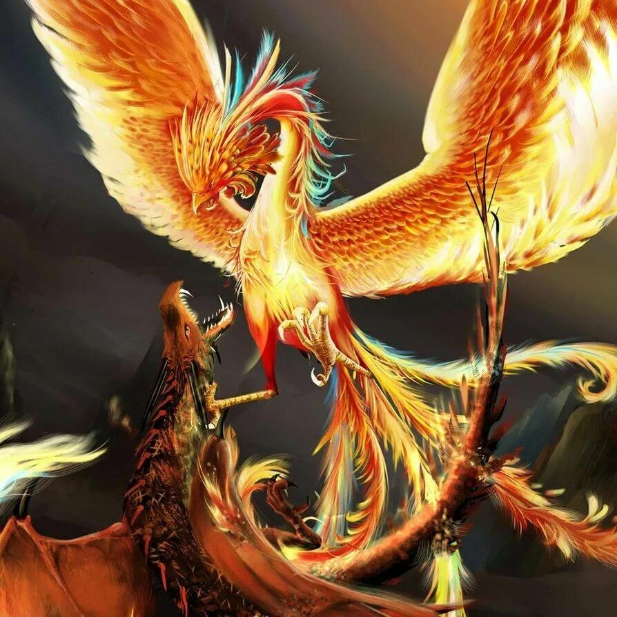 подачей картинки птицы феникса употреблять как самостоятельное