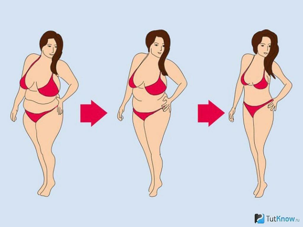 Реальная Схема Похудения. Как быстро похудеть: 9 самых популярных способов и 5 рекомендаций диетологов