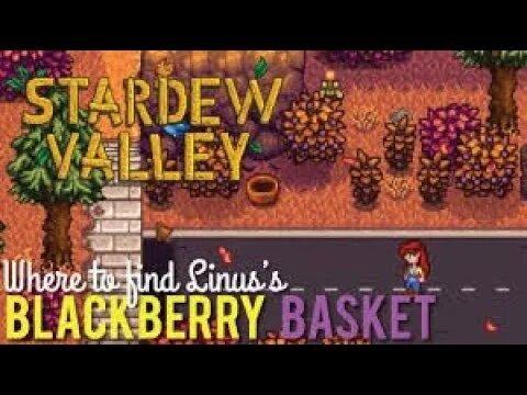 regarder b0a16 1a3c9 Stardew valley basket
