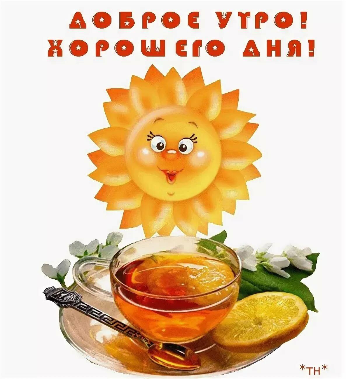 Диске сделать, доброго утра и прекрасного дня открытки с надписями прикольные