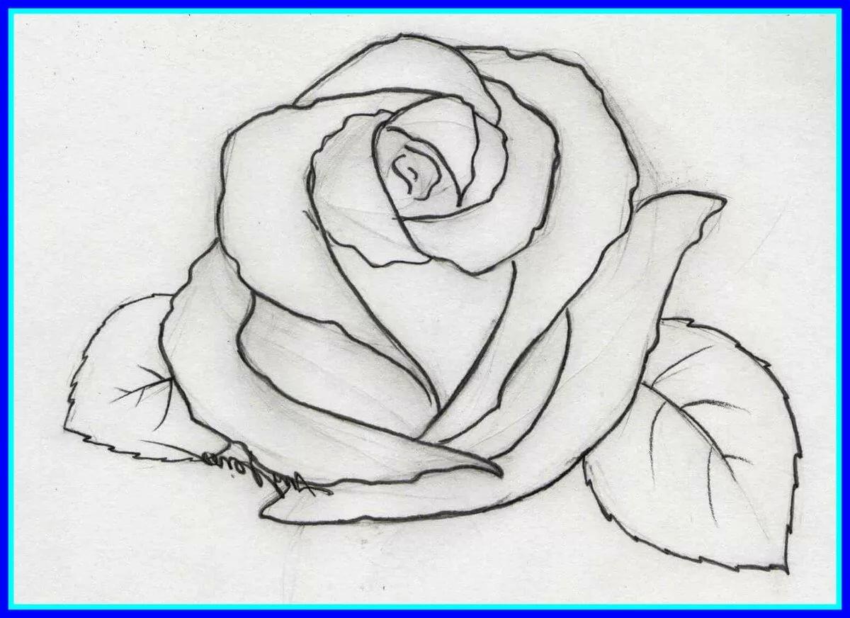 нарисовать красивые картинки для начинающих карандашом пролетел