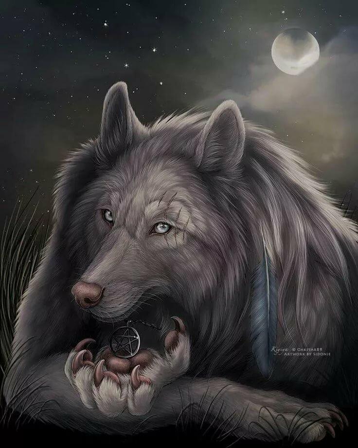 Красивые картинки на телефон с волками которые