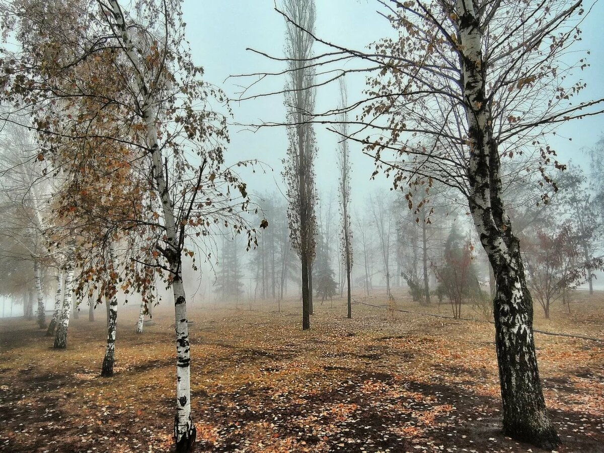 Картинки по теме поздняя осень