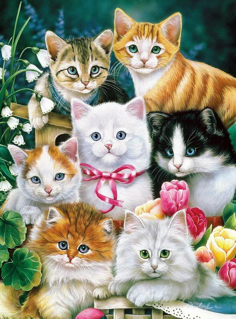 Любимый, открытки с животными разные