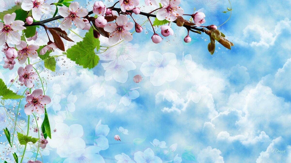 одинаковом картинки весны со светлым фоном новые