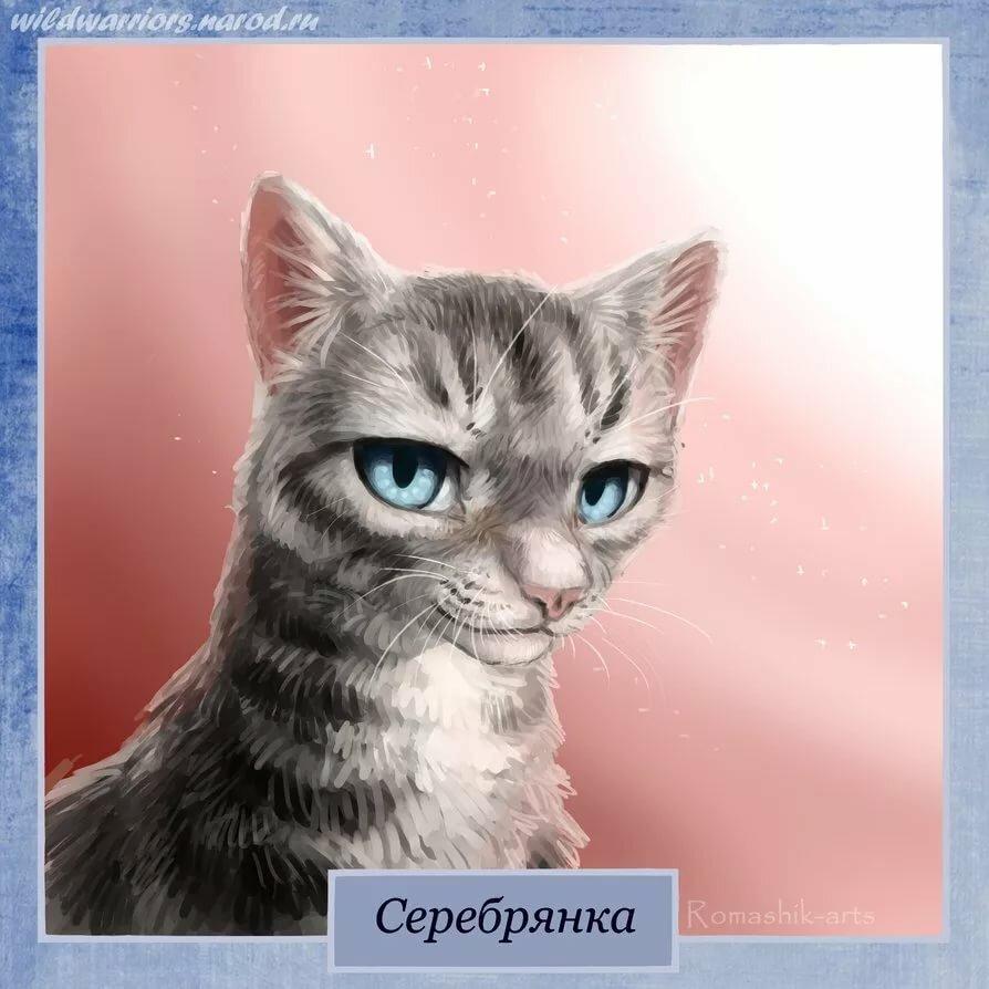 Картинки котов воителей с именами на русском, поздравление