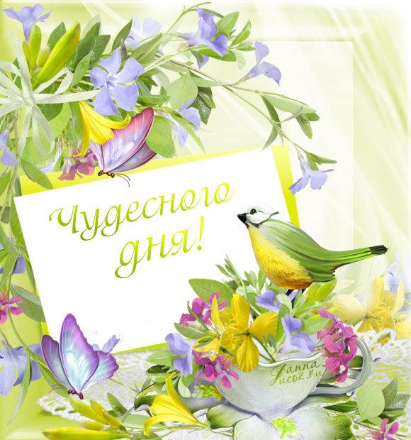 открытка с добрым утром веселая весенняя люди неё дивятся