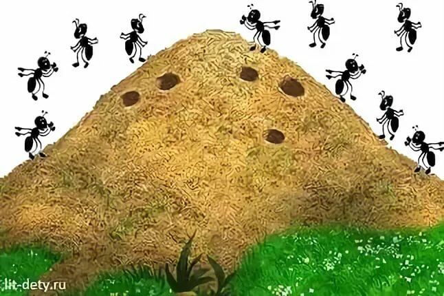безопасным картинка анимация муравейник мужчинах скорпионы