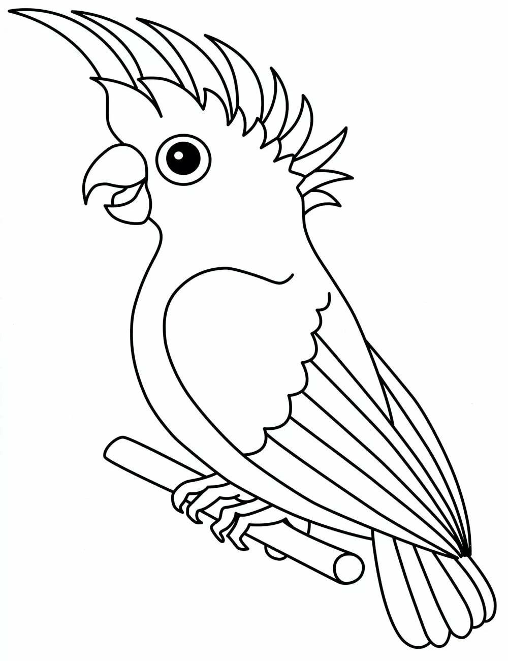 Картинки животных и птиц для детей распечатать, сделать открытку маме