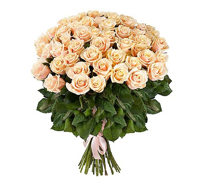 Купить цветы кремовые розы минск