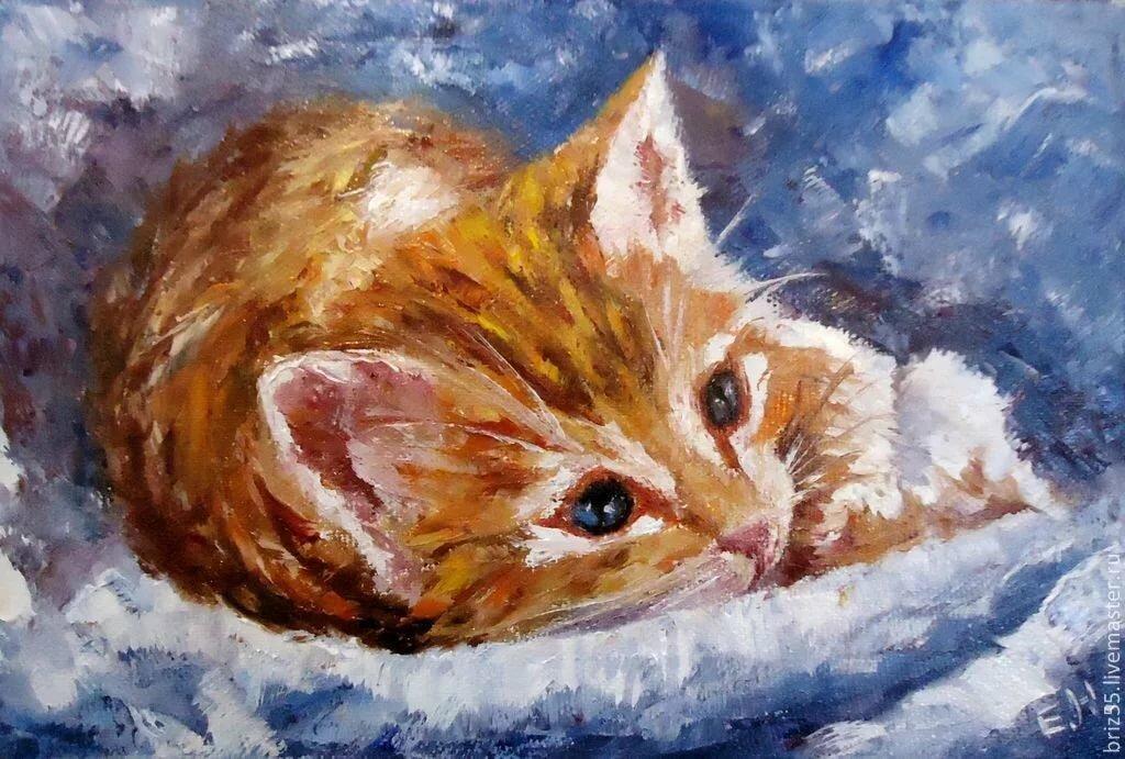 картинки котики для рисования акриловыми красками для начинающих