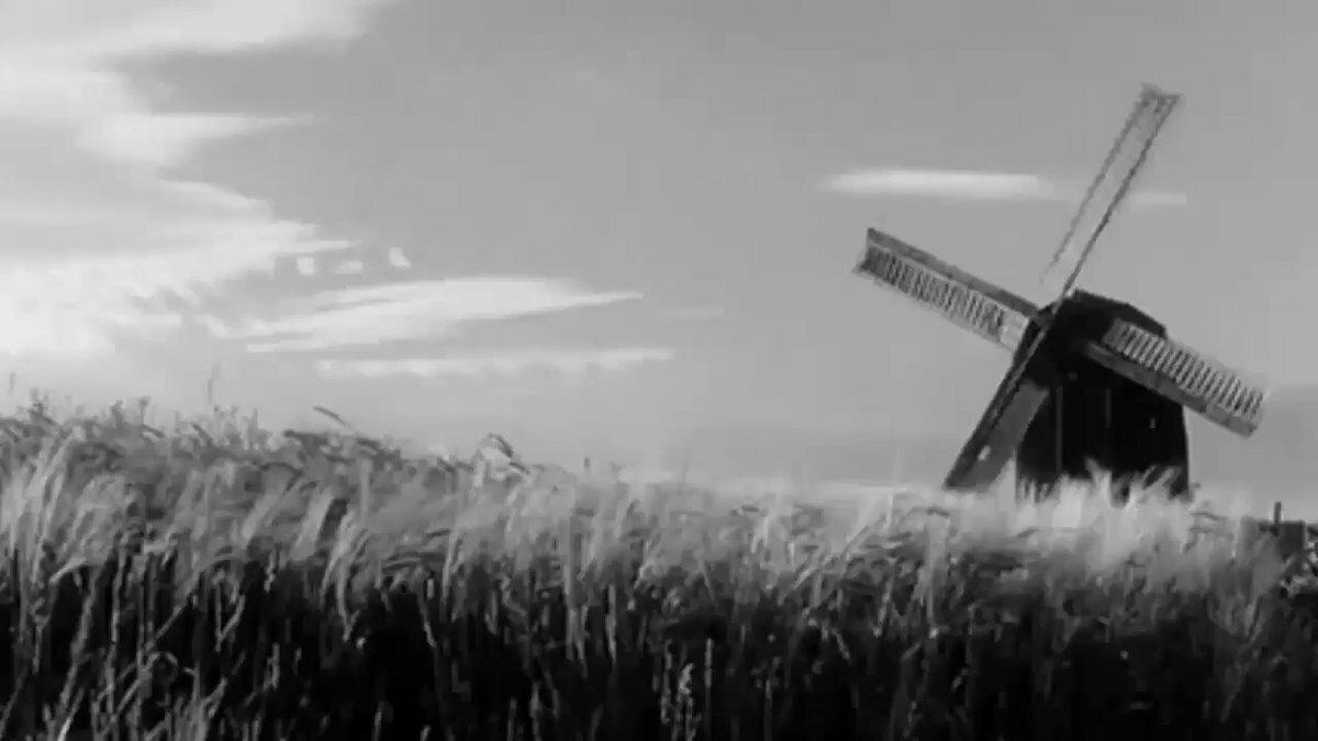Картинки, картинки с анимацией ветер