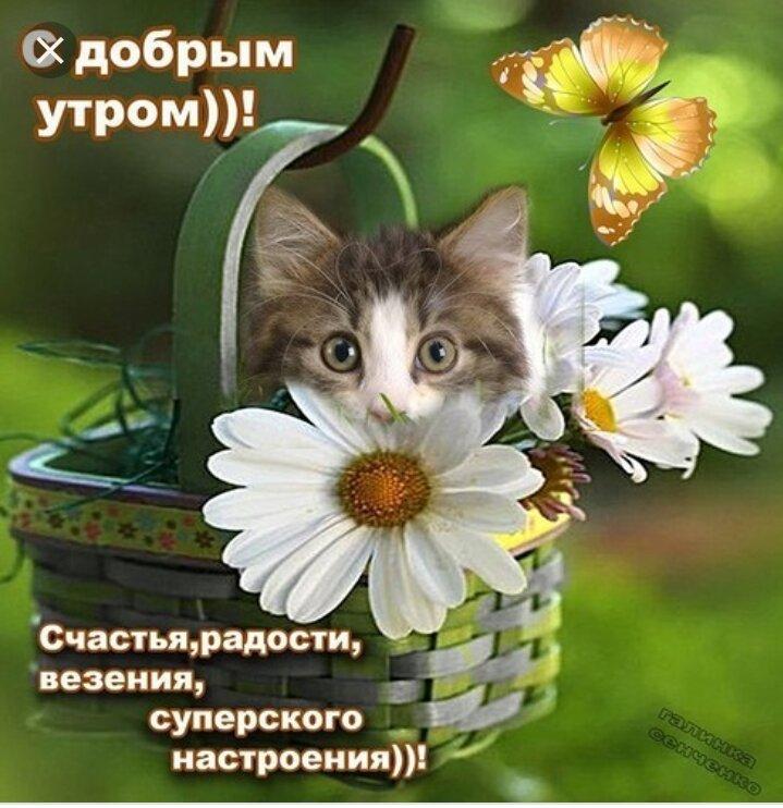 Картинка пожелание удачи и хорошего дня