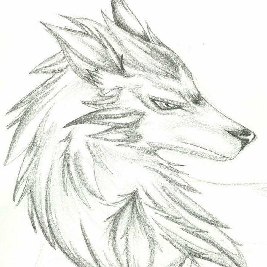 Картинки брату, крутые рисунки волков карандашом легко милый