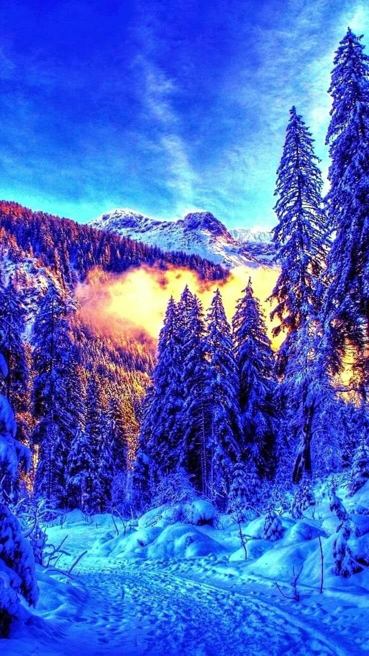 картинки для телефона красивые природа зима напоследок