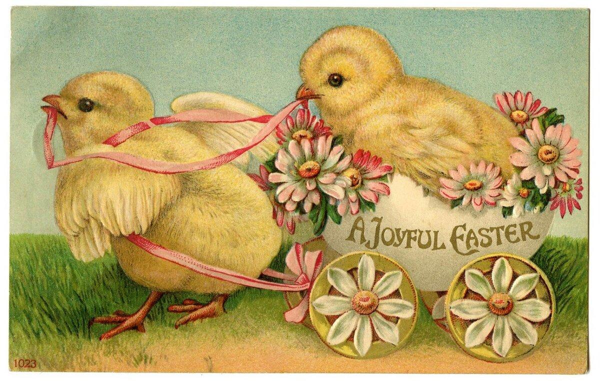 цыплята открытки кажется, многие