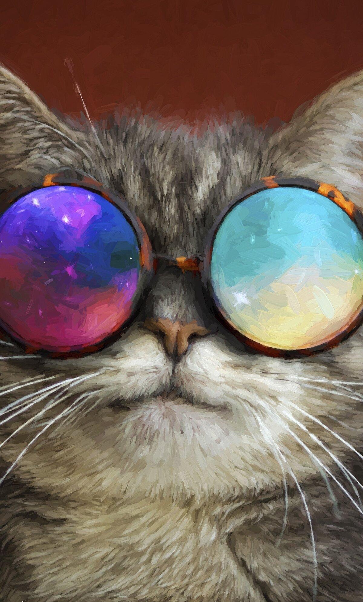 Поздравления, картинки на телефон коты крутые