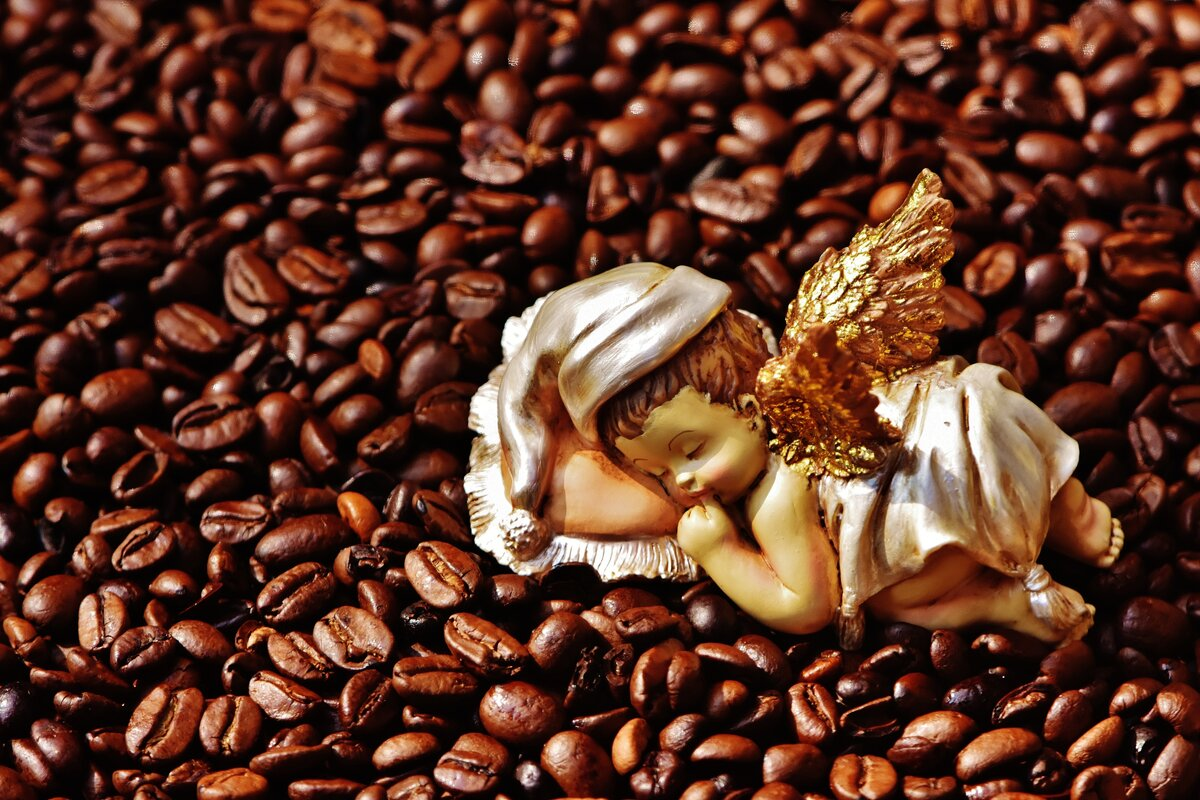 поилками картинки с кофейной тематикой и цветами отел сказать огромное