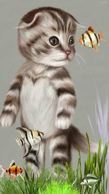 Анимация картинки котиков, прикольные