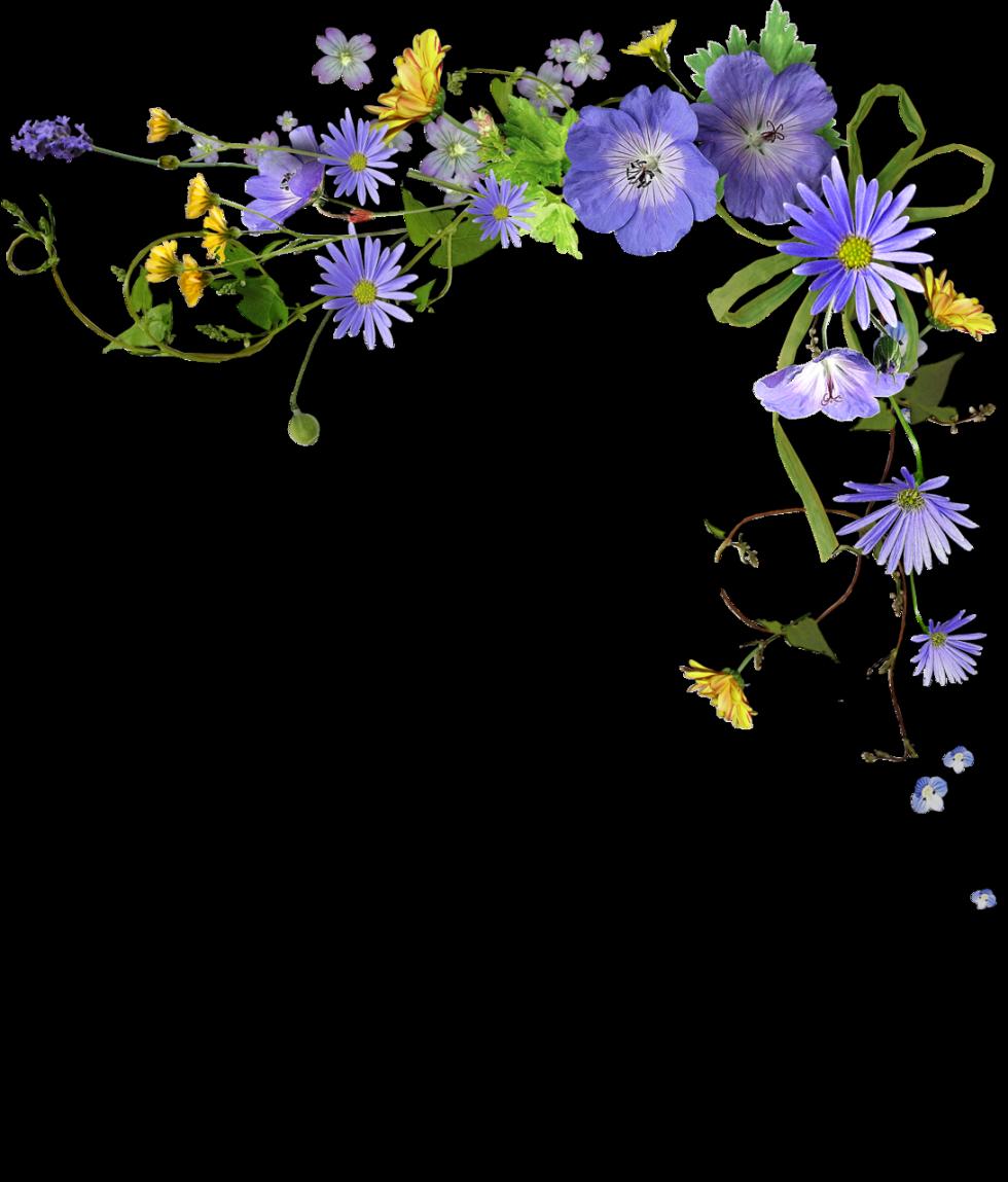 рамки и цветы в открытки уголки изготовить муравьиную