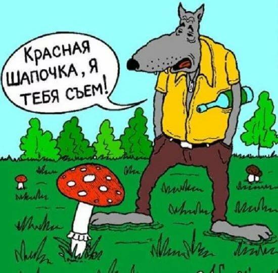 смешные шутки картинки про серого