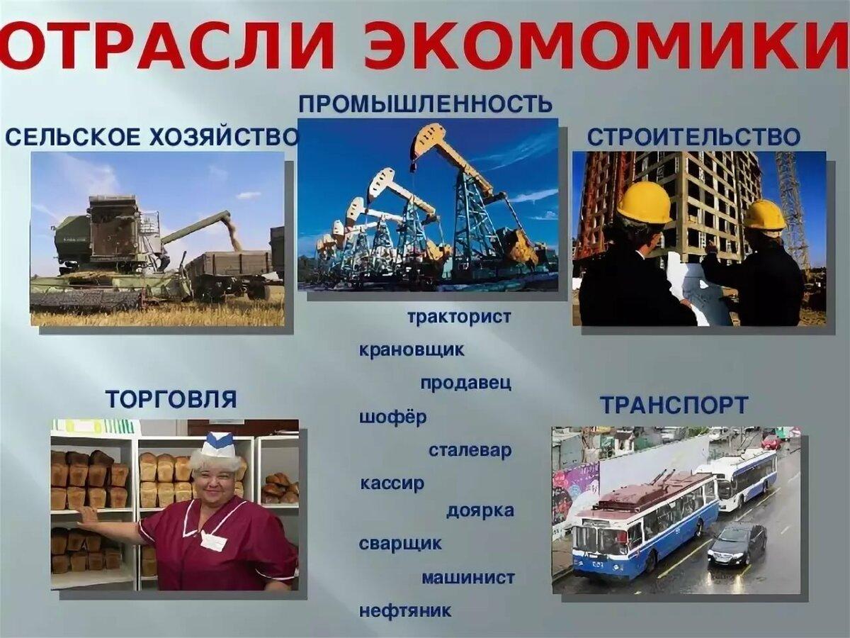 Все отрасли экономики с картинками