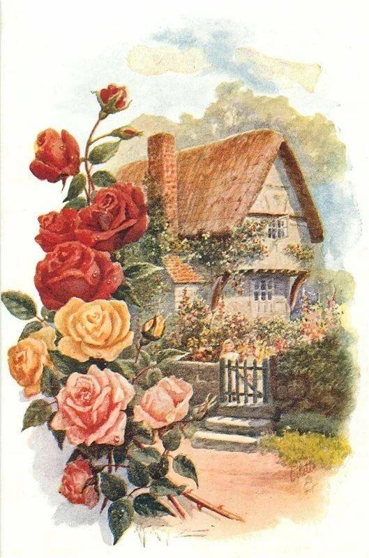 Старые открытки дома, без надписей