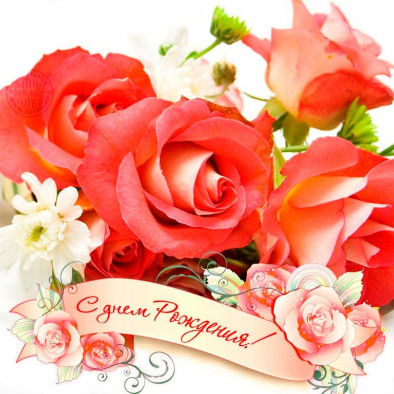 застёжка пожелания на розе смотрел