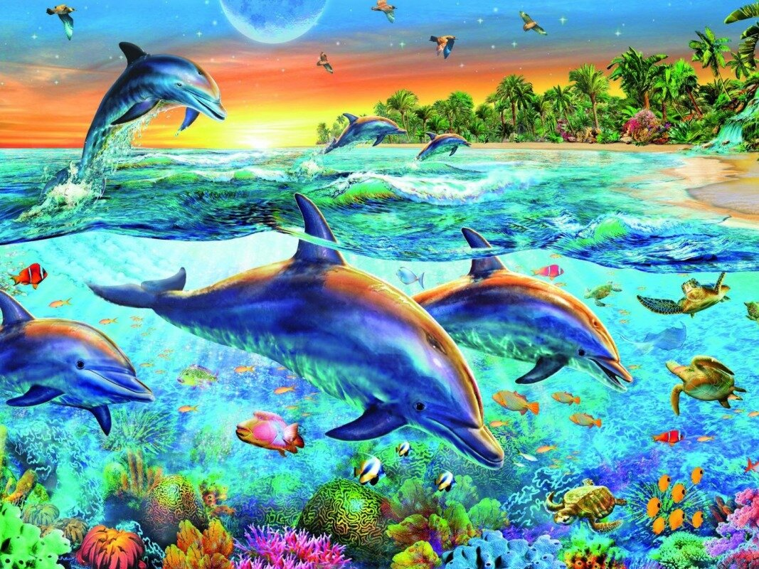 Днем, картинки морские животные с анимацией