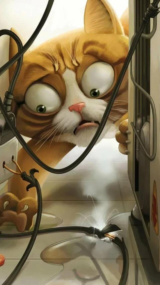 Тебя, кота ударило током смешные картинки
