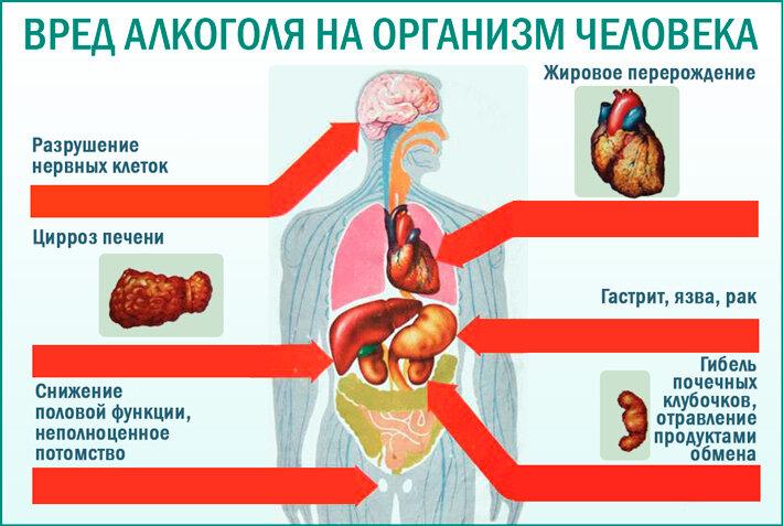 Влияние алкоголя на организм в картинках