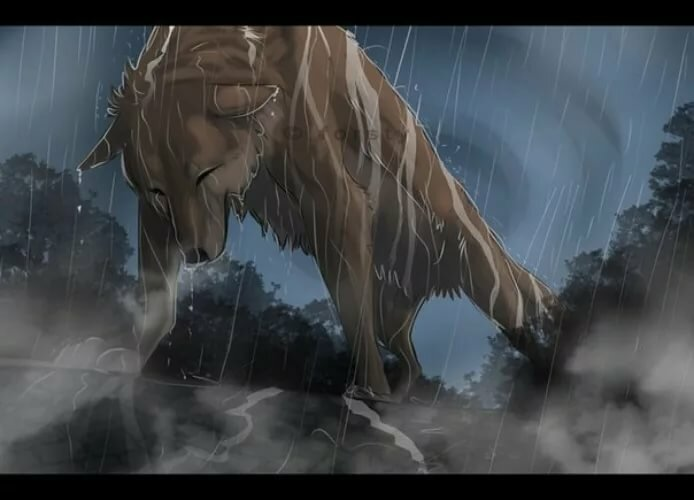 картинка плачущий волк период пребывания парфенчикова