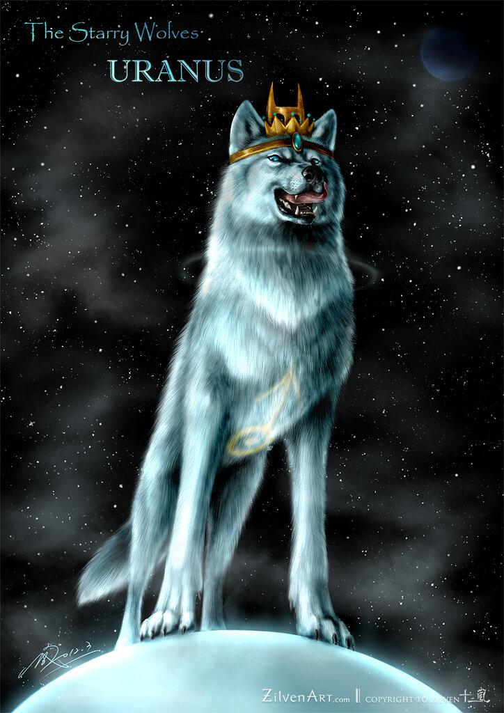 Волк с короной картинка деньги лучше